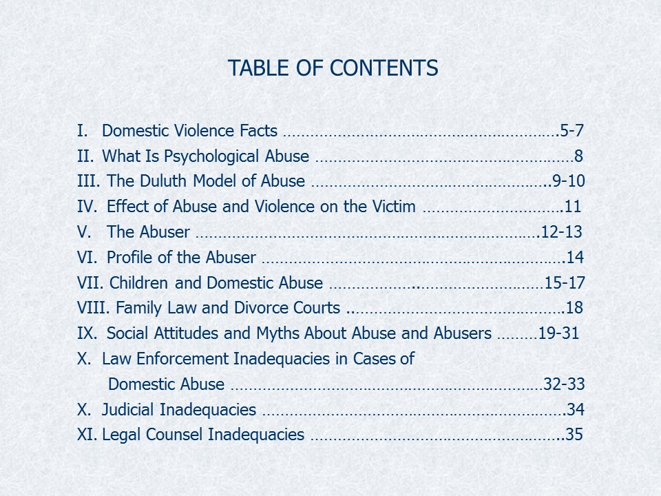DV in Courts Slide3