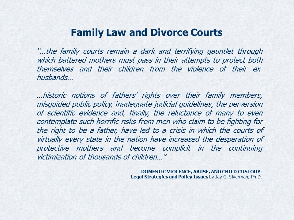 DV in Courts Slide18
